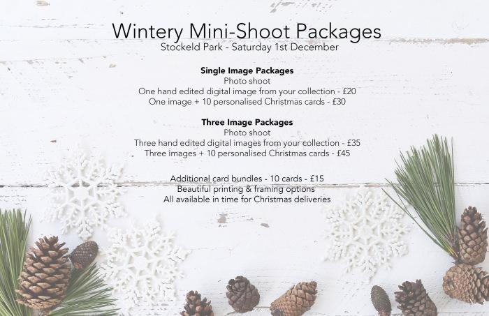 christmas-conifer-cone-decoration website header.jpg